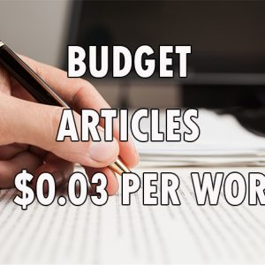 budget article writing services